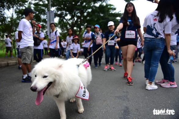 Gần 20.000 người tham gia chạy bộ từ thiện tại TP.HCM - Ảnh 12.