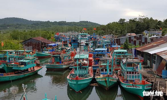 Tàu cá tránh bão Tembin ken đặc Phú Quốc - Ảnh 7.
