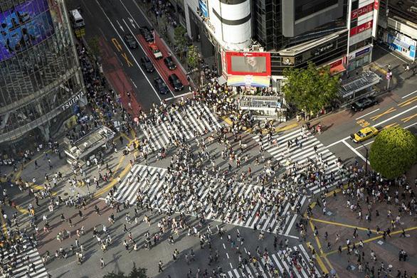 Shinjuku, Shibuya, Harajuku: những điểm không thể bỏ qua khi đến Tokyo - Ảnh 12.