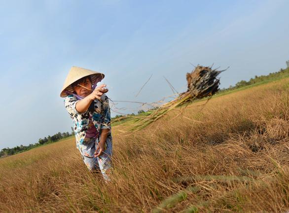Tử huyệt nguồn nước sông Mekong - Ảnh 3.
