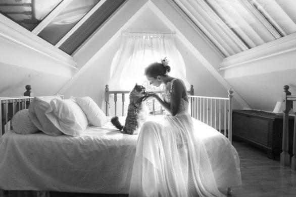 Ảnh cưới dễ thương chụp cùng mèo cưng - Ảnh 1.