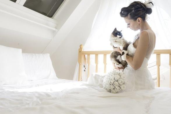 Ảnh cưới dễ thương chụp cùng mèo cưng - Ảnh 2.