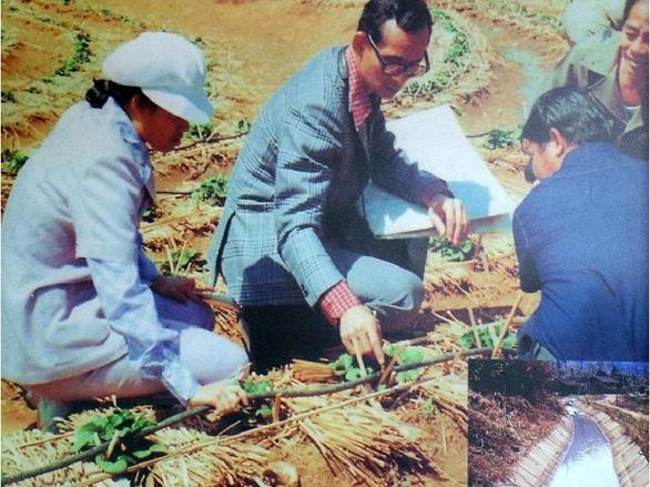 Từ câu chuyện thanh long, nhìn sang nông nghiệp Thái - Ảnh 2.