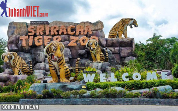 Tour Thái Lan 4 sao, siêu khuyến mãi - Ảnh 2.