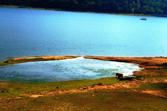 Cuối tuần đi ngắm hồ Phú Ninh mùa nước cạn - Ảnh 3.
