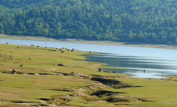 Cuối tuần đi ngắm hồ Phú Ninh mùa nước cạn - Ảnh 4.