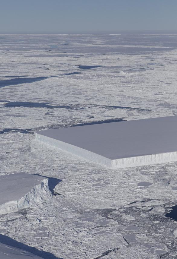 Tảng băng A68 gây bão mạng có chị em sinh đôi - Ảnh 2.