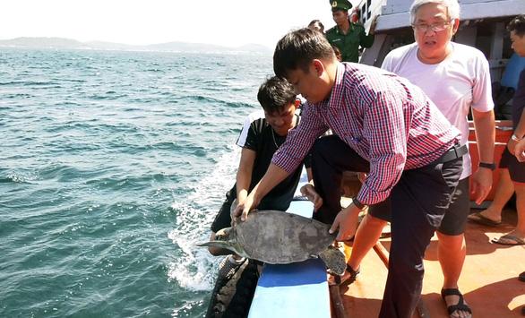 Thả 9 con rùa biển quý hiếm về biển Phú Quốc - Ảnh 1.