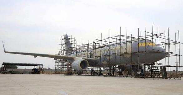 Nông dân trồng tỏi làm được máy bay Airbus như thật - Ảnh 1.