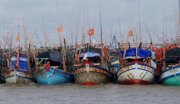 Tàu cá hết đường đánh bắt bất hợp pháp - Ảnh 1.