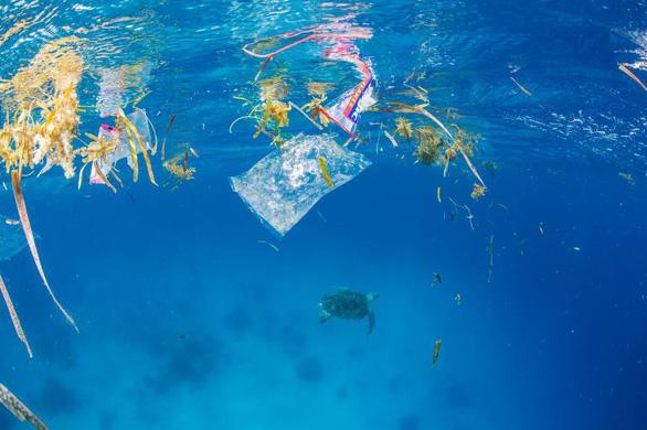 Rác nhựa bủa vây, đại dương kêu cứu - Ảnh 2.