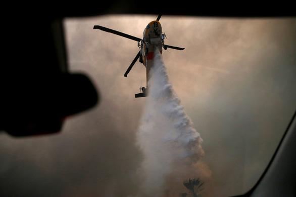 Cháy dữ dội rừng California, ông Trump chê 'quản lý kém' - Ảnh 4.