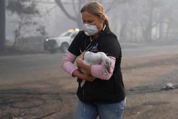 Mỹ: 23 người đã thiệt mạng do cháy rừng tại California - Ảnh 5.
