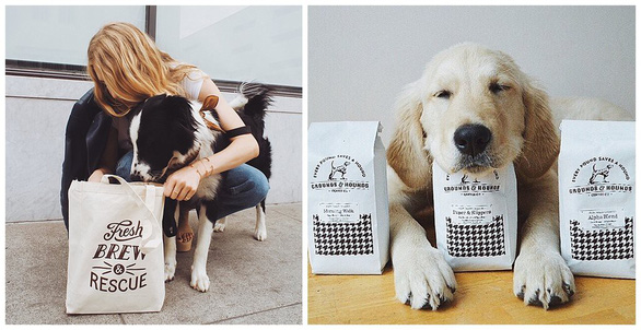Mở thương hiệu cà phê cứu chó, chàng trai thu 1 triệu USD - Ảnh 3.