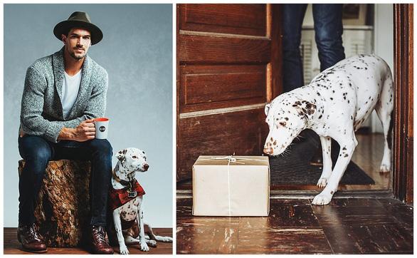 Mở thương hiệu cà phê cứu chó, chàng trai thu 1 triệu USD - Ảnh 4.