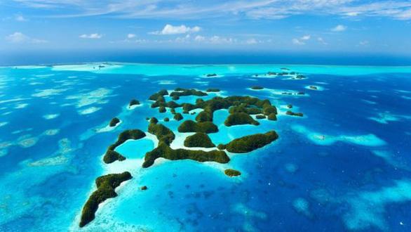Quốc gia đầu tiên cấm kem chống nắng để bảo vệ san hô - Ảnh 3.