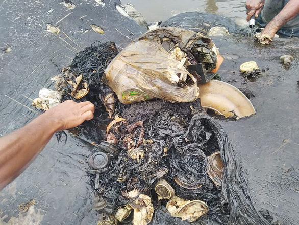 Cá nhà táng chết dạt vào bờ với 5,9kg rác nhựa trong bụng - Ảnh 4.