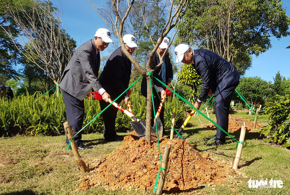Sau thử nghiệm, Đà Lạt trồng đồi hoa anh đào Nhật Bản - Ảnh 2.
