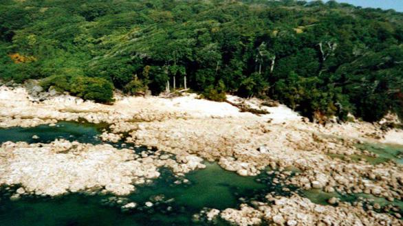 Cố ý đến đảo thổ dân Ấn Độ, du khách Mỹ chết vì mưa tên - Ảnh 1.