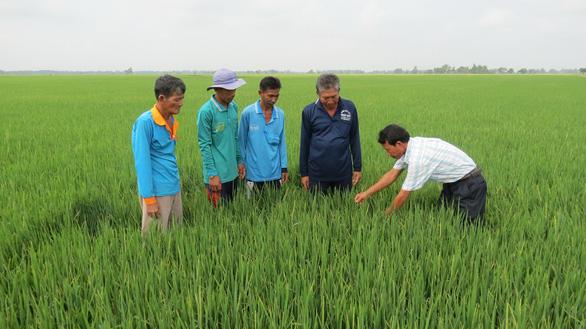 Nhiều mô hình tốt nâng cao cuộc sống cho nông dân - Ảnh 1.