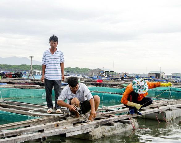 Ninh Thuận, Vũng Tàu, các tỉnh miền Tây dồn lực chống bão - Ảnh 1.