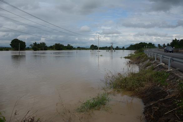 Thủ phủ thanh long Bình Thuận ngập nặng - Ảnh 5.