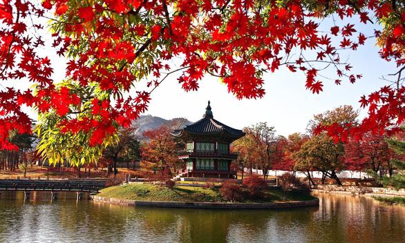 Làm công việc tự do có dễ xin visa du lịch Hàn Quốc? - Ảnh 3.
