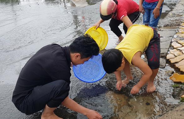 Người dân ven Sài Gòn rủ nhau bắt cá trên đường ngập - Ảnh 1.
