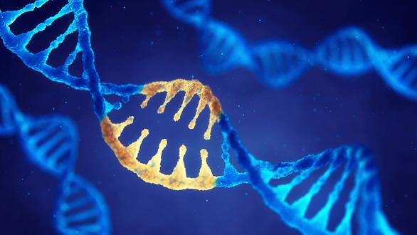 Thiên tài điên chỉnh sửa gen từng mơ thành Einstein của Trung Quốc - Ảnh 2.