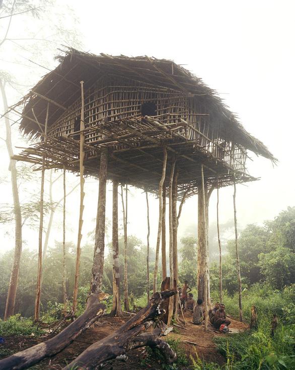 Tới Tây Papua xem bộ lạc Kombai làm nhà cao chót vót - Ảnh 8.