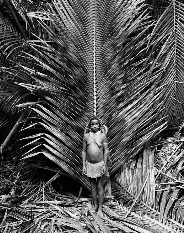 Tới Tây Papua xem bộ lạc Kombai làm nhà cao chót vót - Ảnh 7.