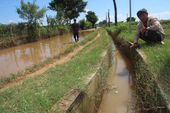 Chính quyền xây kênh chắn dòng chảy, dân khổ sở vì hoa màu ngập - Ảnh 2.