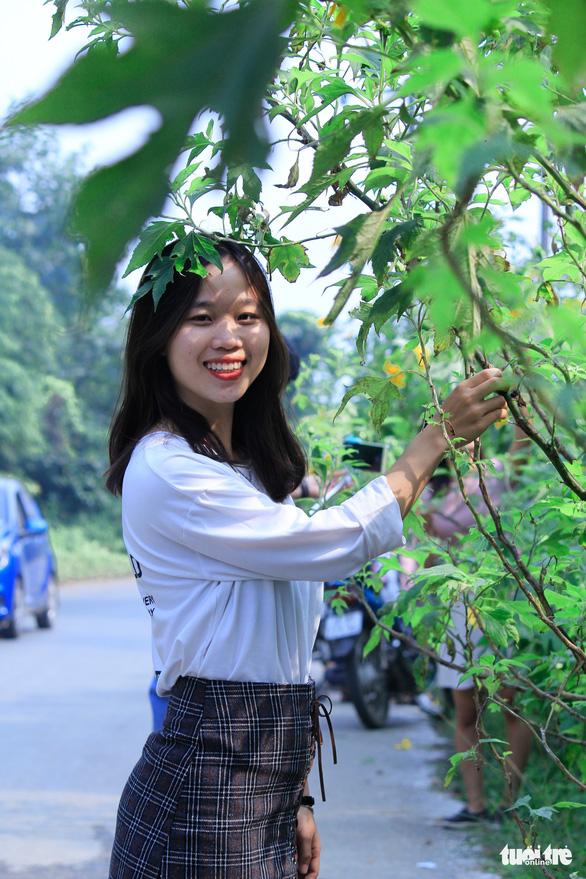 Hoa dã quỳ Ba Vì nở rộ hút giới trẻ Hà thành chụp ảnh check in - Ảnh 7.