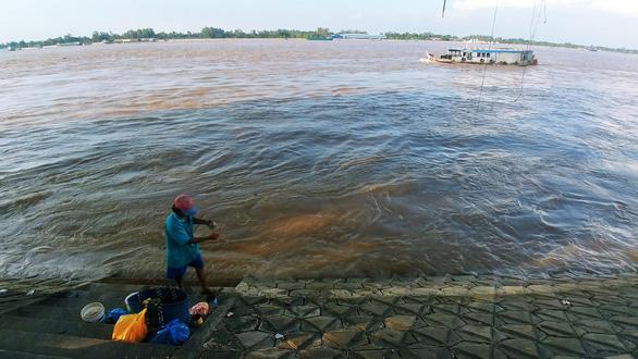 Những mùa cá đồng miền lũ - kỳ cuối: Làm gì để bảo tồn nguồn cá đồng? - Ảnh 3.