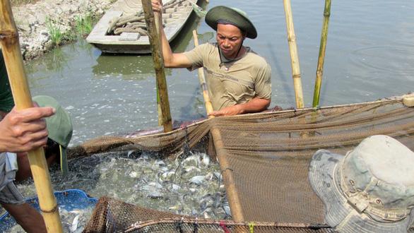 Tử huyệt nguồn nước sông Mekong - Ảnh 2.