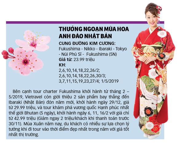 """Đến Nhật ngắm hoa Anh đào bằng """"chuyên cơ"""" - Ảnh 3."""