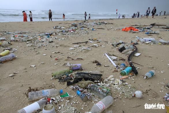 Sinh vật biển theo rác thải trôi dày đặc trên bãi biển Đà Nẵng - Ảnh 2.