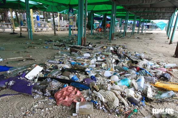 Sinh vật biển theo rác thải trôi dày đặc trên bãi biển Đà Nẵng - Ảnh 3.