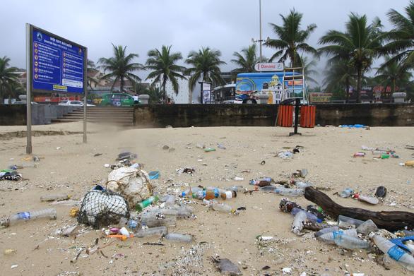 Hoa khôi sinh viên Việt Nam dọn vệ sinh bãi biển sau mưa lũ - Ảnh 3.