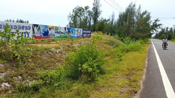 Kỷ luật phó giám đốc sở liên quan vụ phá rừng ở Phú Yên - Ảnh 1.