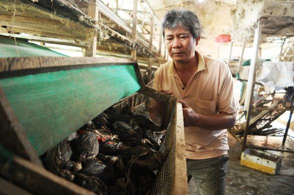 Lũ Quảng Nam khiến 4 người chết, thiệt hại hơn 120 tỉ đồng - Ảnh 2.