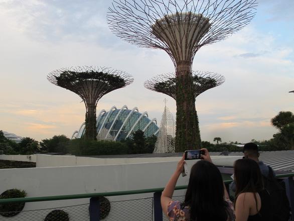Tour Con nhà siêu giàu châu Á - Ảnh 1.