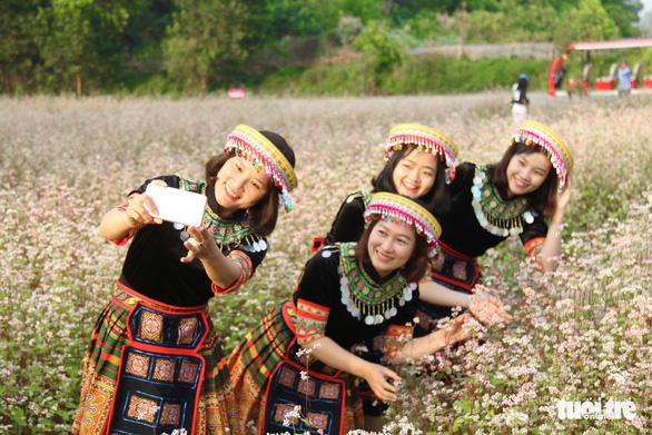Cánh đồng hoa tam giác mạch ở Hà Nội hút giới trẻ đến check-in - Ảnh 8.