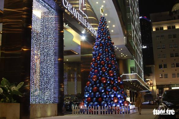 Ngắm thông Noel rực rỡ phố Sài Gòn - Ảnh 6.