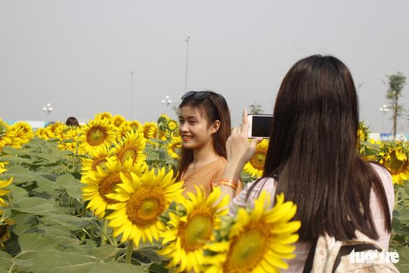 Cuối tuần đi chụp ảnh vườn hoa hướng dương ở TP.HCM - Ảnh 4.