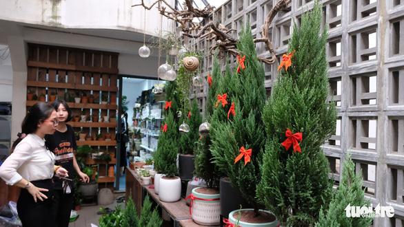 Bạn trẻ biến tấu cây xanh thân thiện môi trường mùa Giáng sinh - Ảnh 1.
