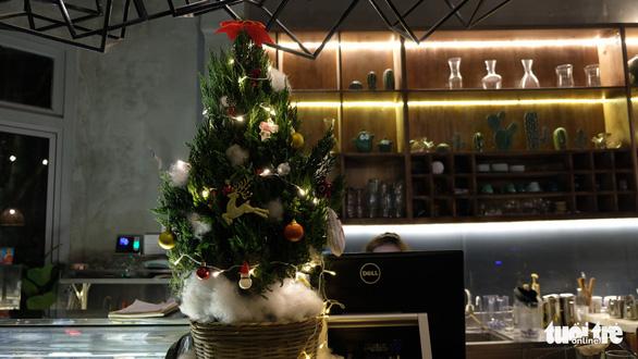 Bạn trẻ biến tấu cây xanh thân thiện môi trường mùa Giáng sinh - Ảnh 8.