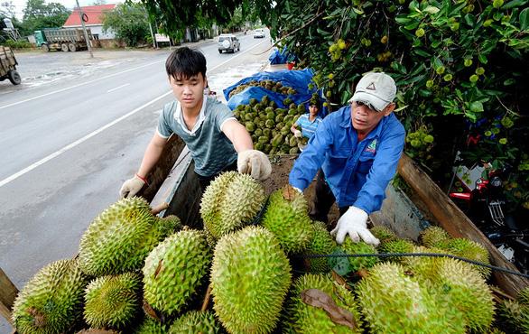 Nông sản Việt Nam sang Trung Quốc gặp khó - Ảnh 1.