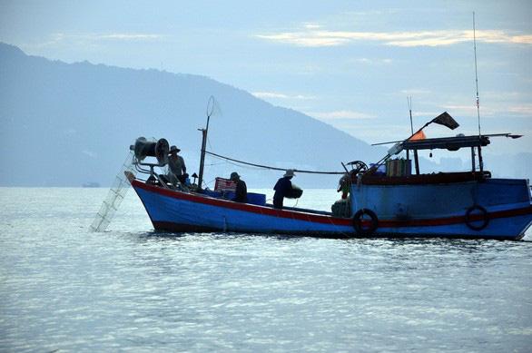 Phải nuôi dưỡng nguồn lợi hải sản - Ảnh 5.
