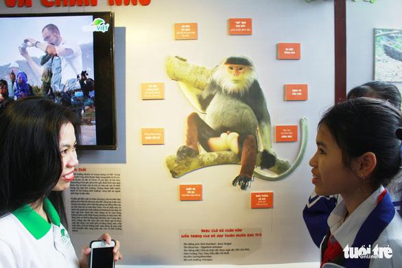 Đà Nẵng có trung tâm giáo dục trải nghiệm thiên nhiên đầu tiên cho trẻ - Ảnh 3.